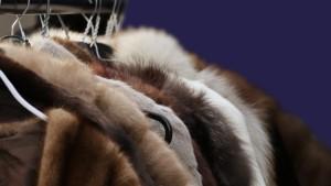 Химчистка кожаных и меховых изделий
